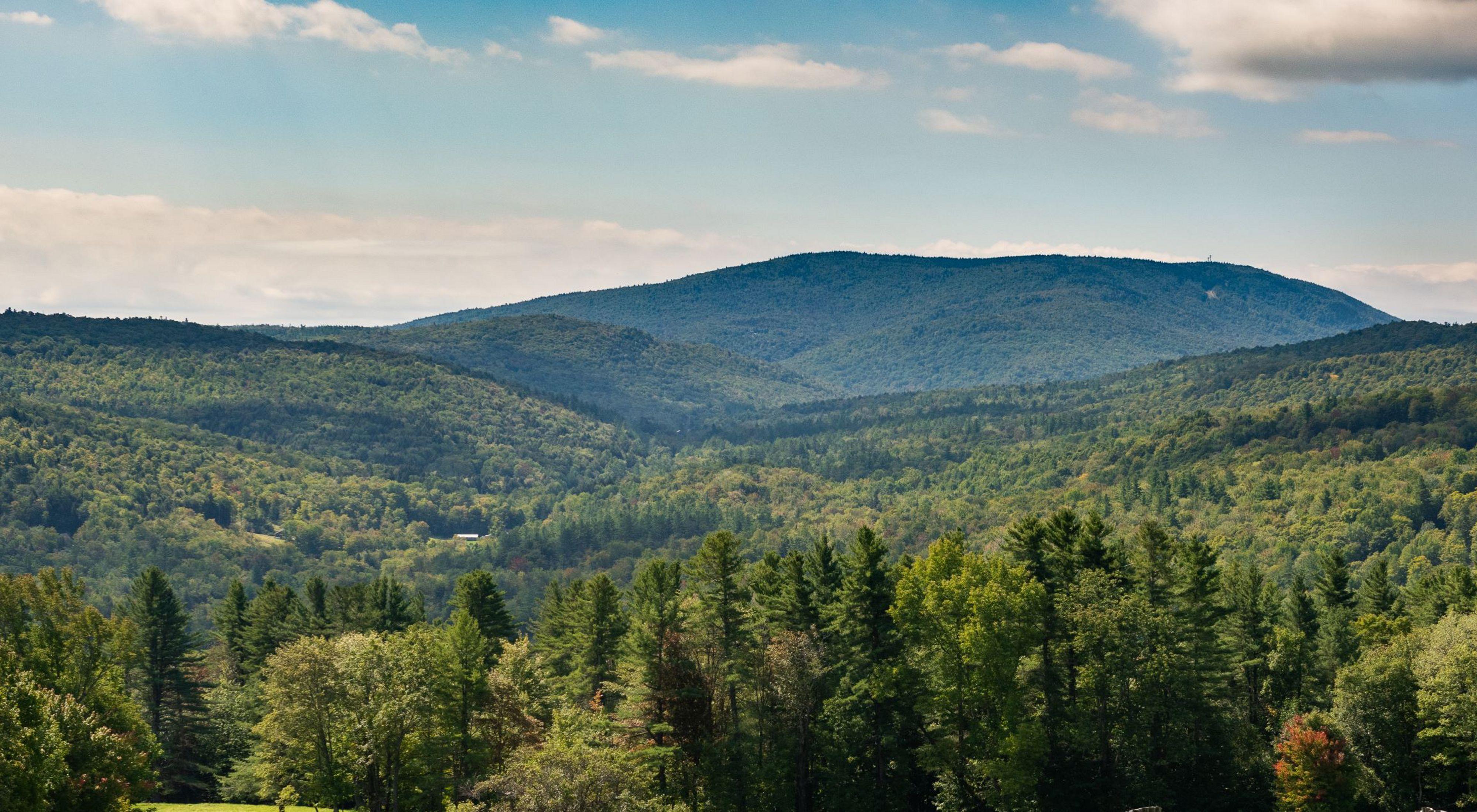 Glebe Mountain Landscape in Vermont
