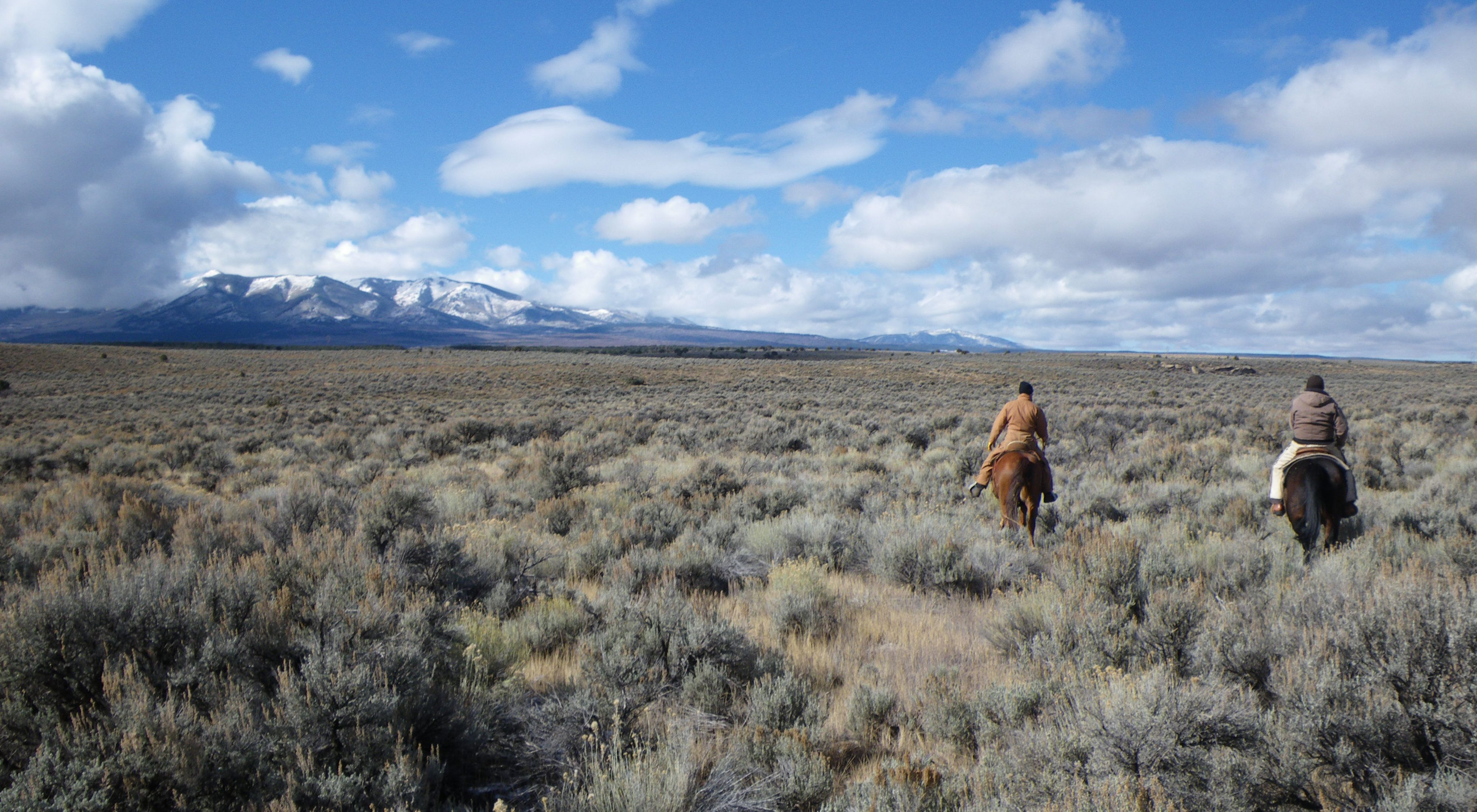 View of protected critical habitat for the Gunnison sage-grouse.