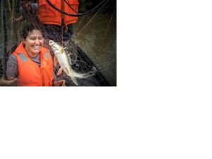 TNC Gabon Program Director Marie-Claire Paiz and science expedition team collect fish via gillnetting.
