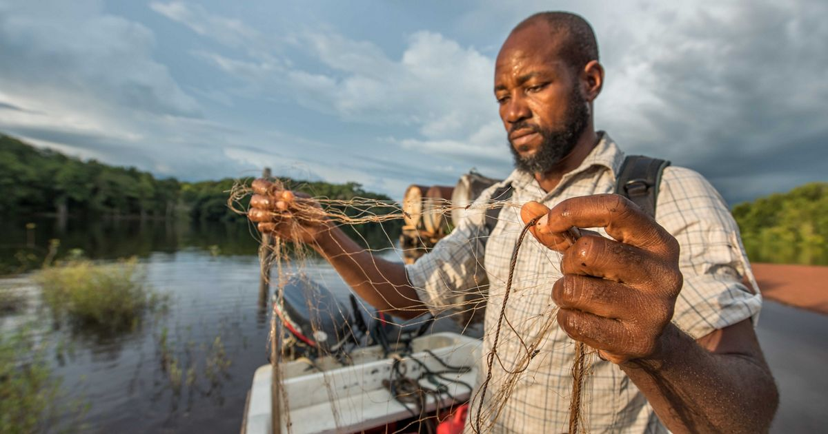 Man inspects fishing net