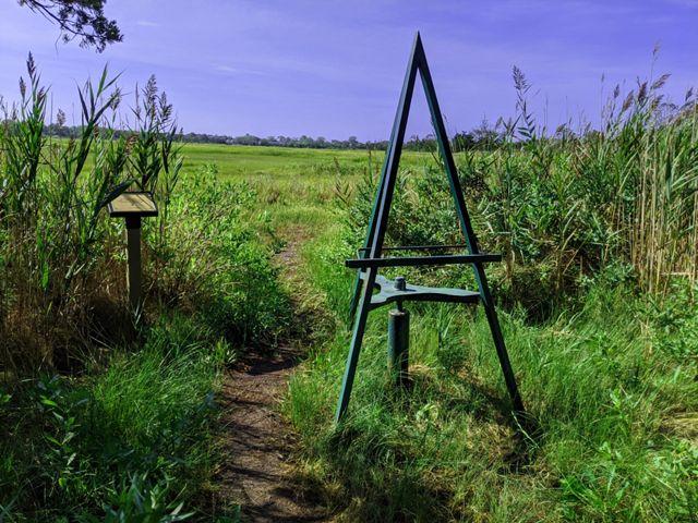 Art easel near tidal marsh.