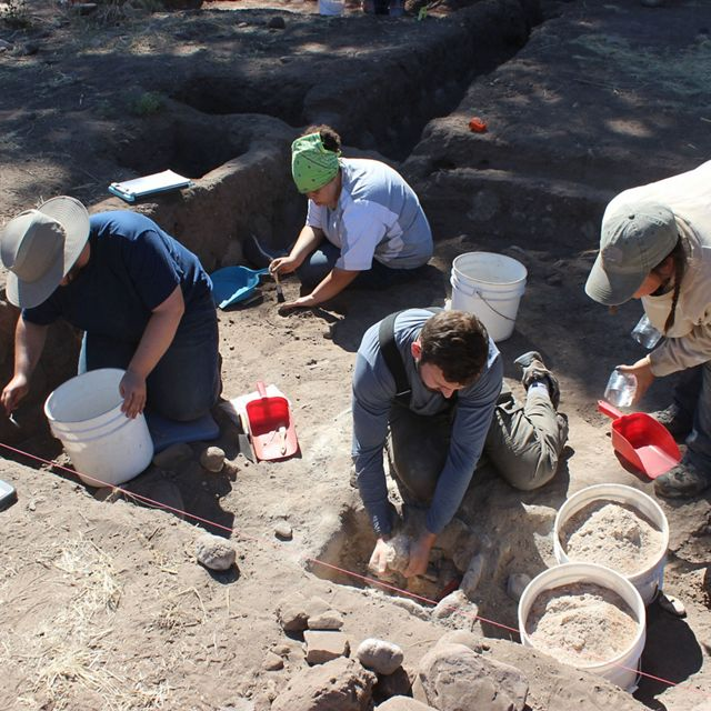 Four people with buckets excavate a site.