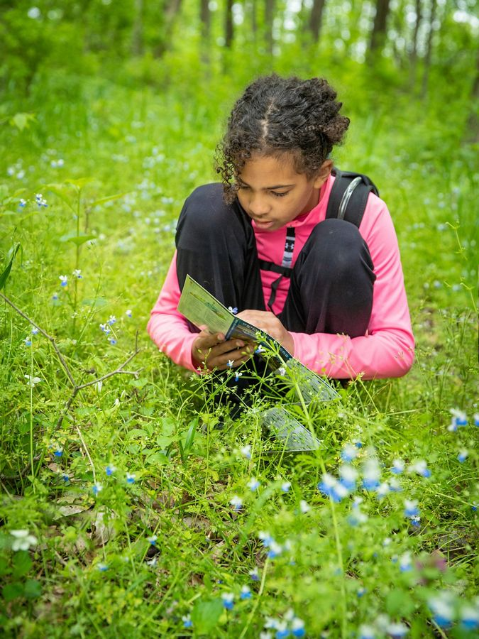 Young girl among wildflowers reading a brochure.