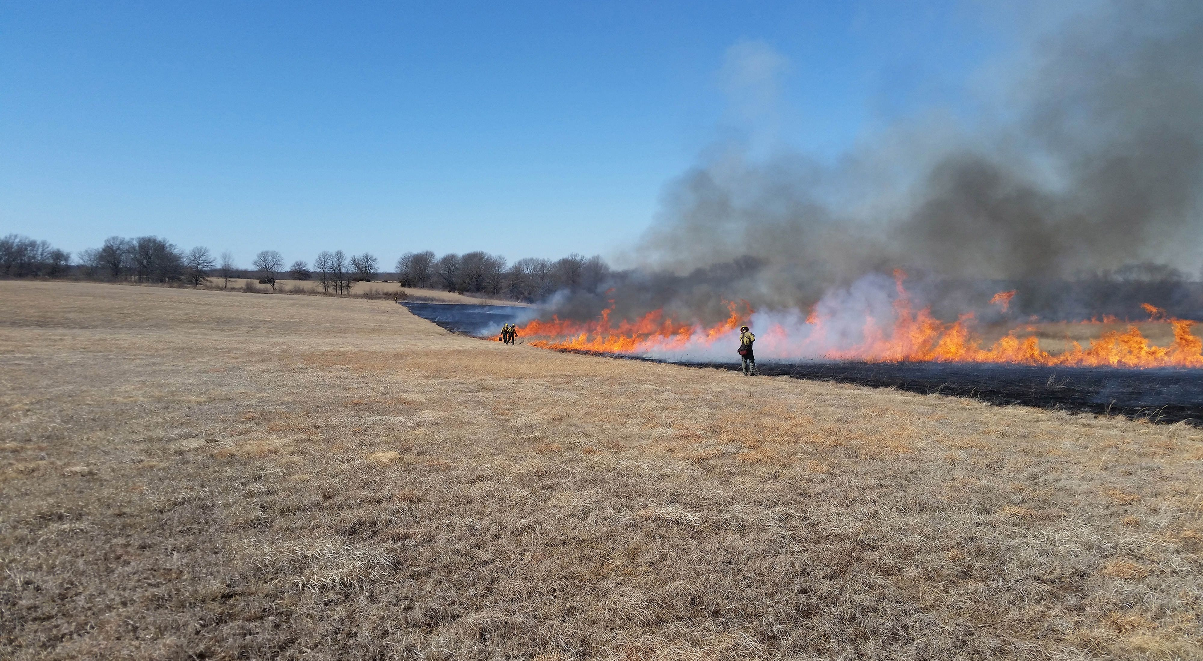 SS_prescribed_burn_at_thorny_mountain
