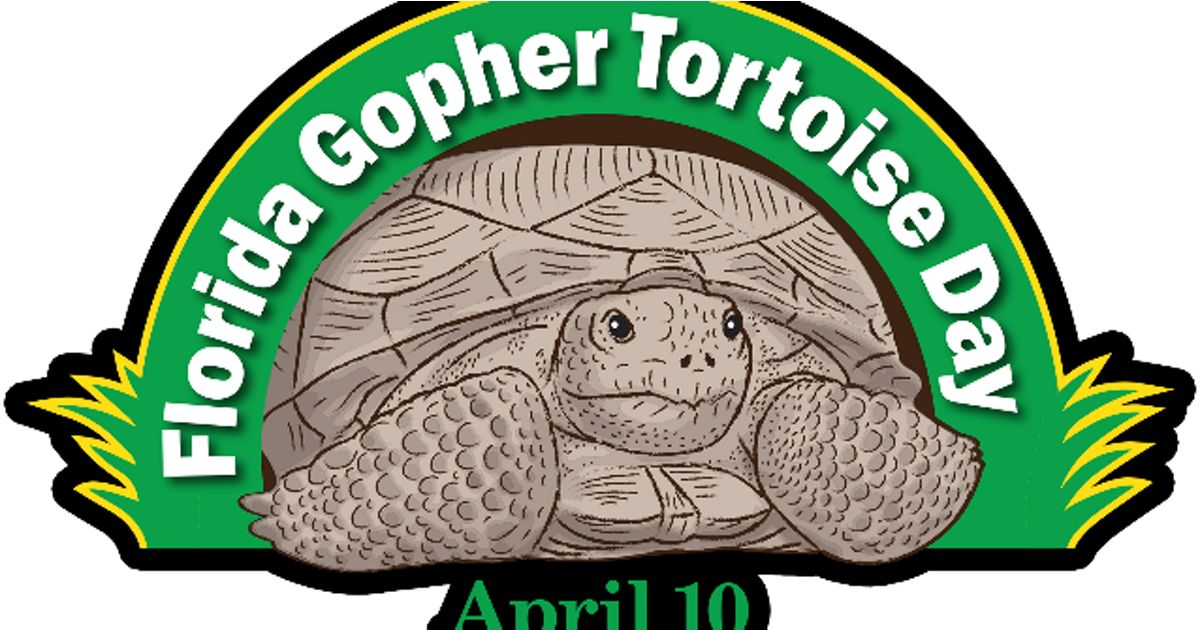 Annual Celebration of the Gopher Tortoise