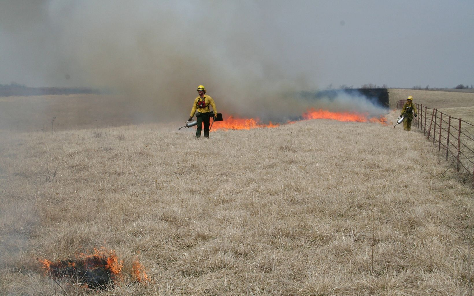 a controlled fire burning  on the prairie