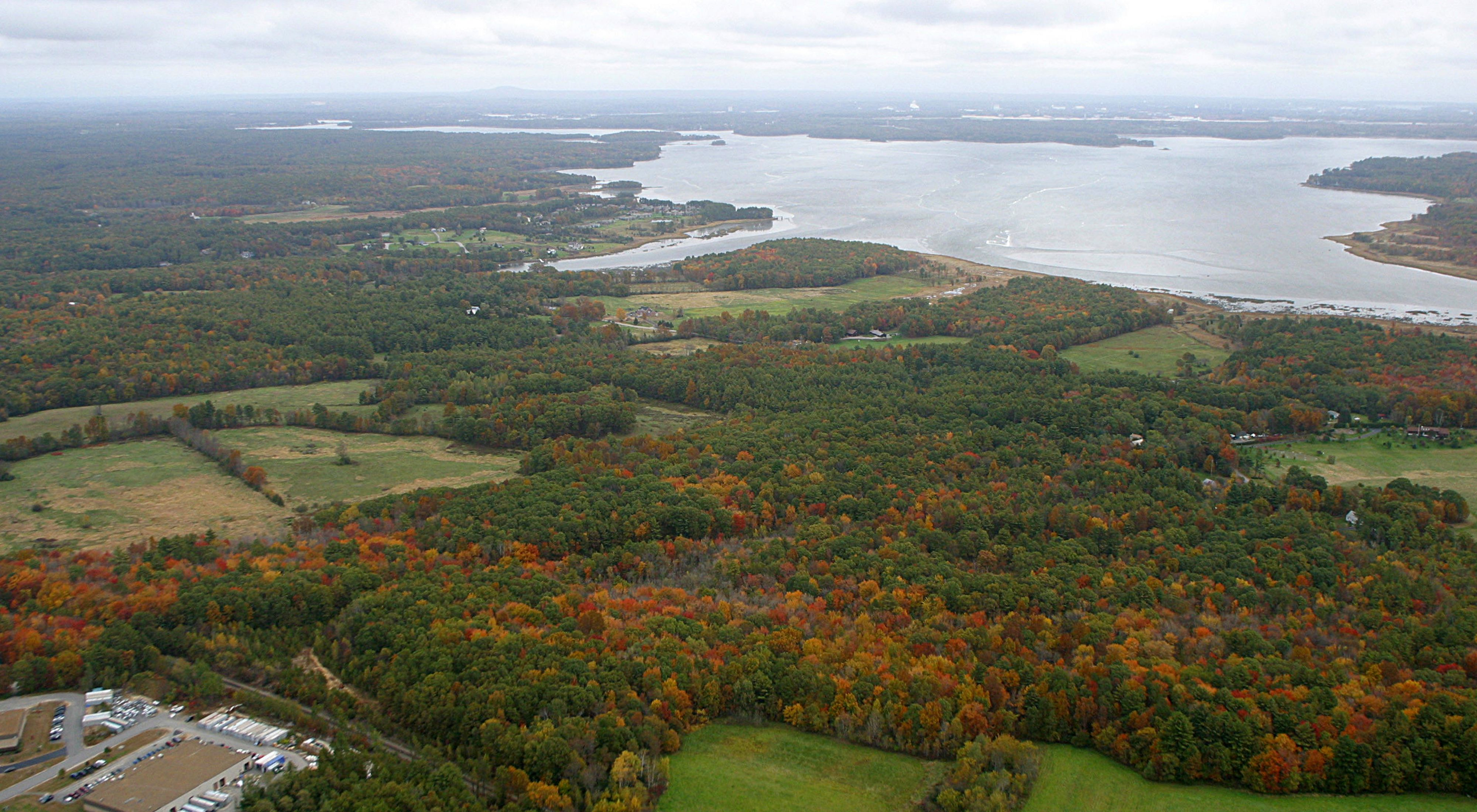 View from a plane looking out over an estuary in the background with trees just starting to show fall colors in the foreground.