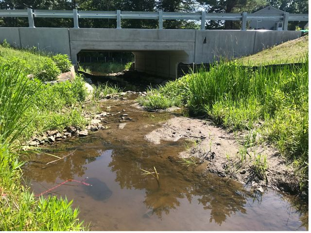 A tidal stream flows freely under a road crossing.