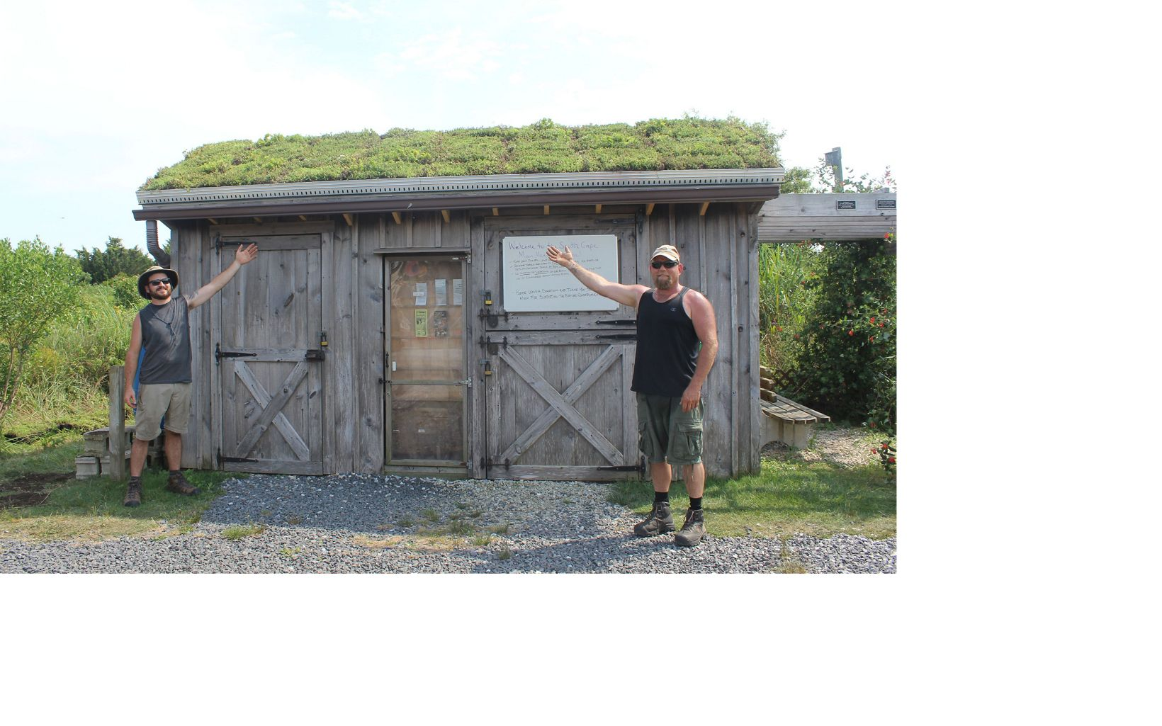 The green roof at the visitor Kiosk at the South Cape May Meadows Preserve