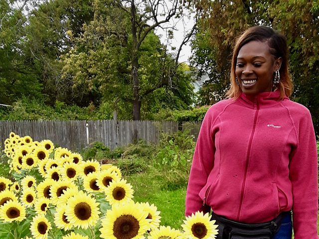 Tianna Jennings, Green Visions project manager, surveys the new sunflowers.