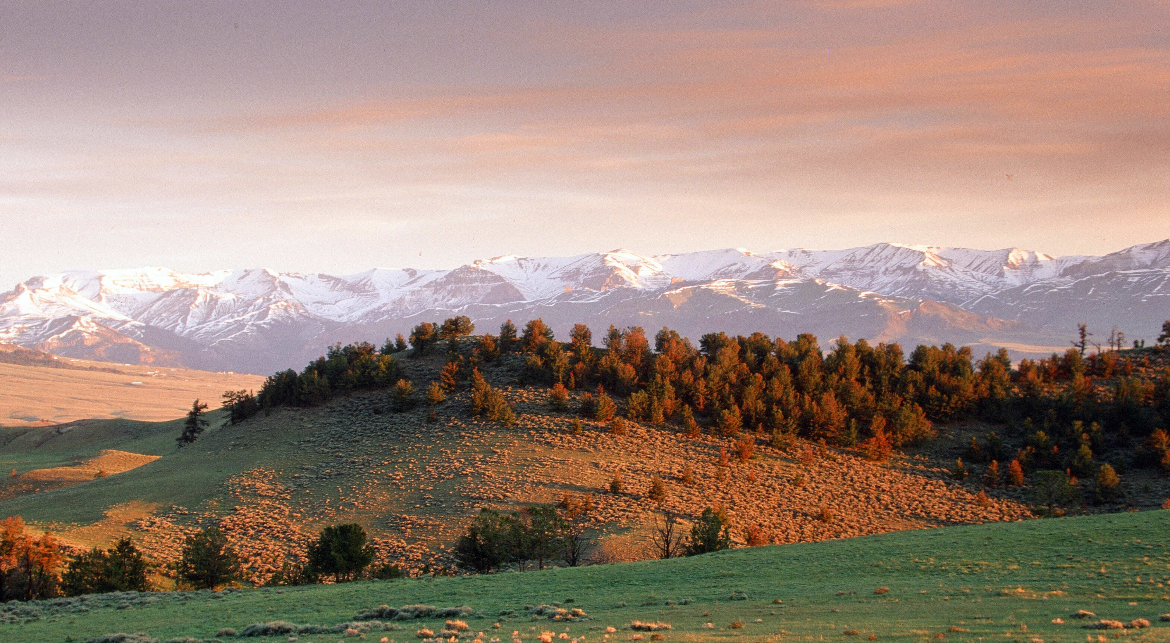 Early morning view of the mountains near Pitchfork Ranch.