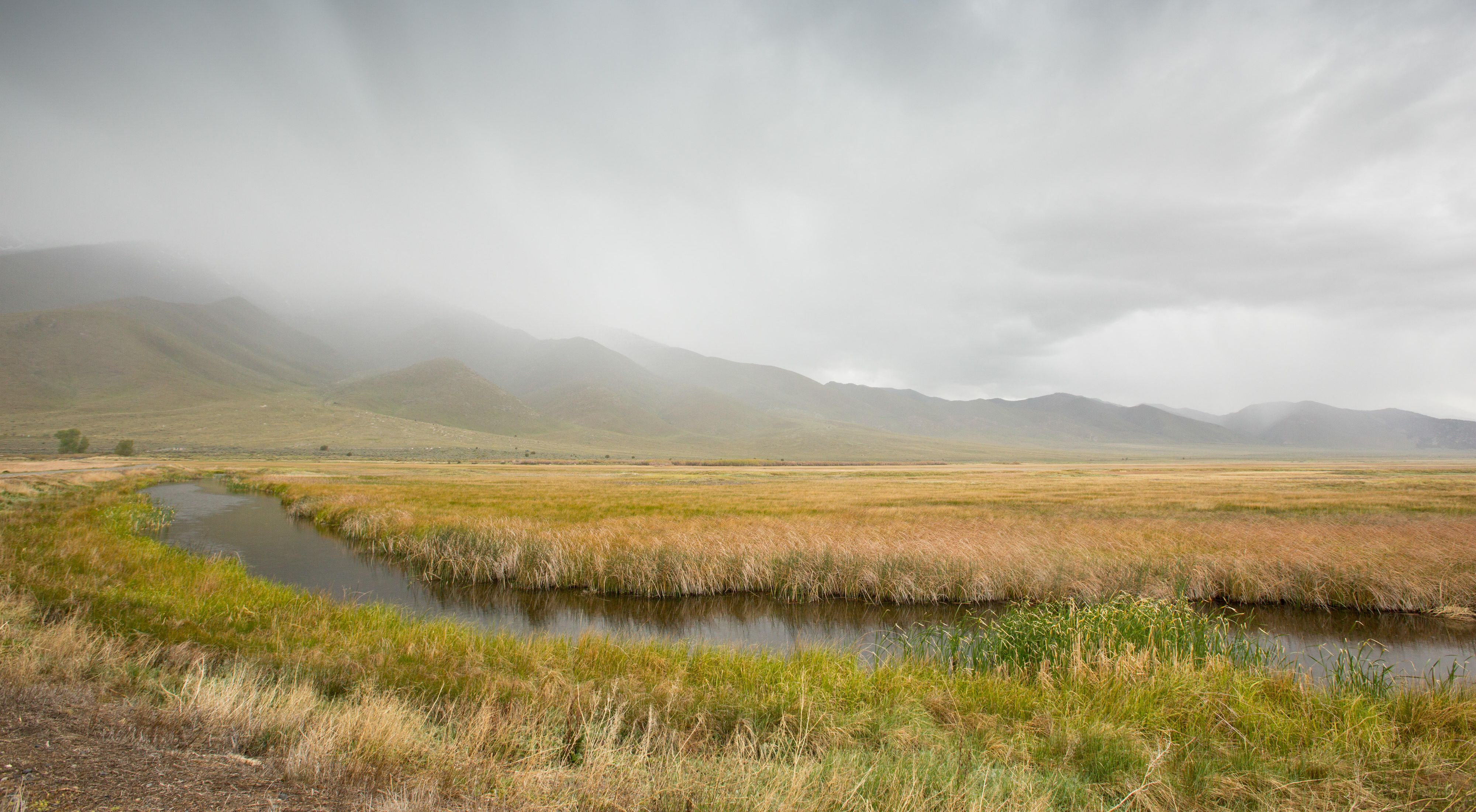 View of a groundwater dependent ecoystem at Ruby Lake National Wildlife Refuge