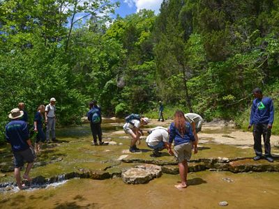 Looking downstream of low-water filled creek bed, several people are standing and crouching in the creek exploring what is there.