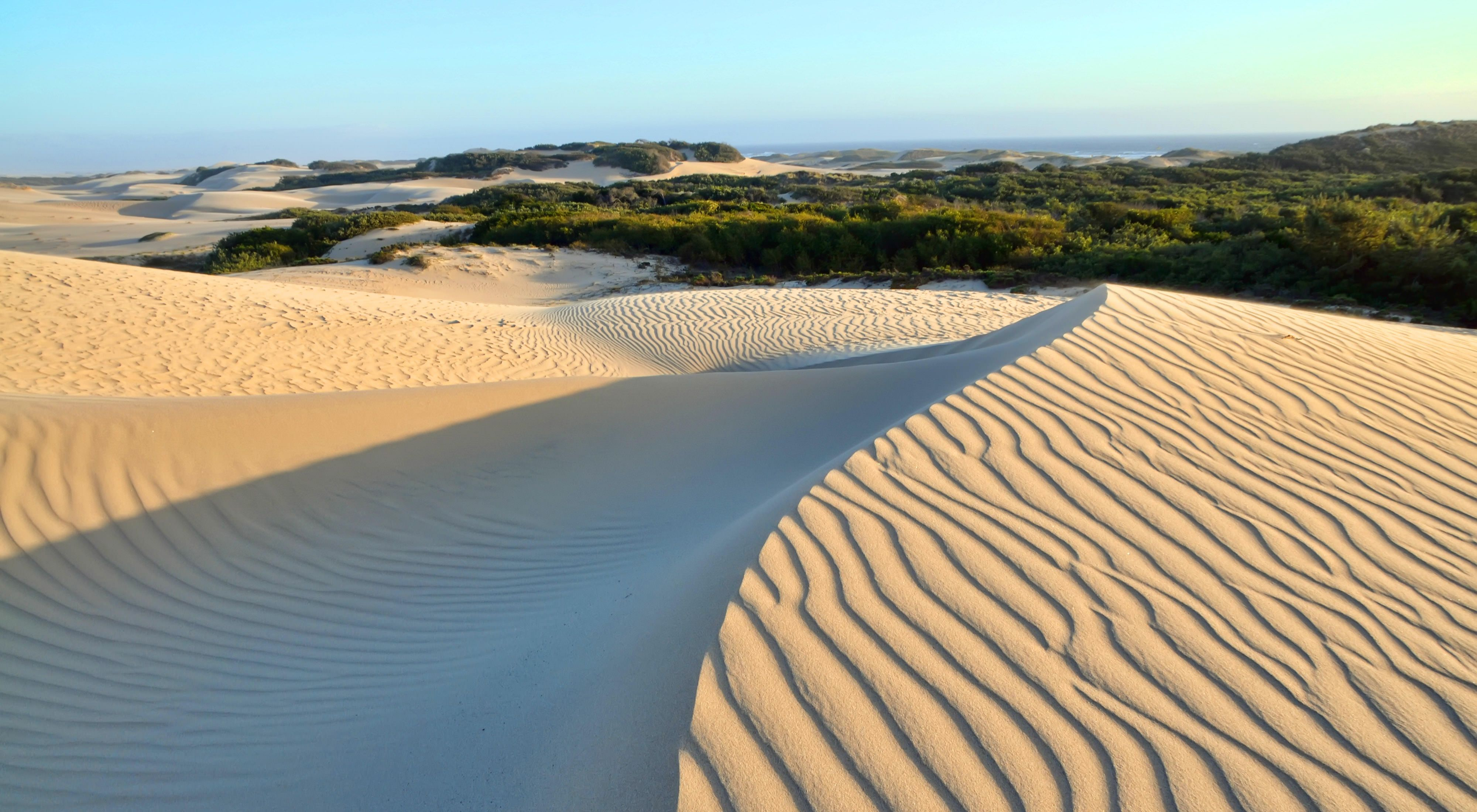 Guadalupe-Nipomo Dunes on the central coast of California