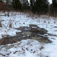 A wetland emerges from a snowy area.