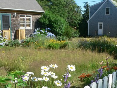 Matt Pelikan, restoration ecologist for The Nature Conservancy in Massachusetts, used Habitat Network principles to develop his yard as an oasis for wildlife on Martha's Vineyard.