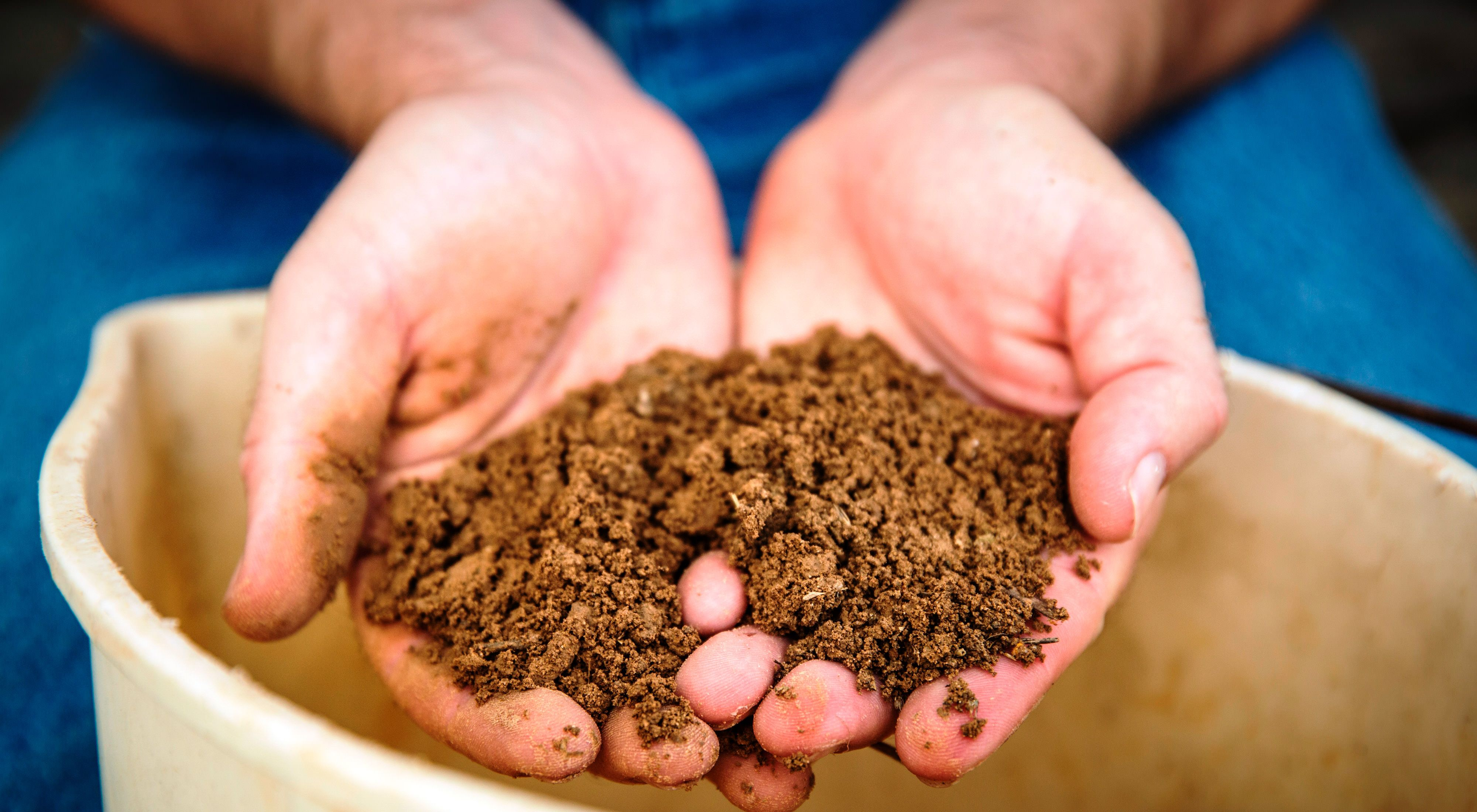 Two hands hold health soil.