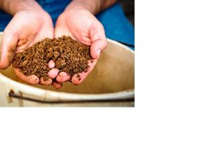 Two hands hold a mound of soil.