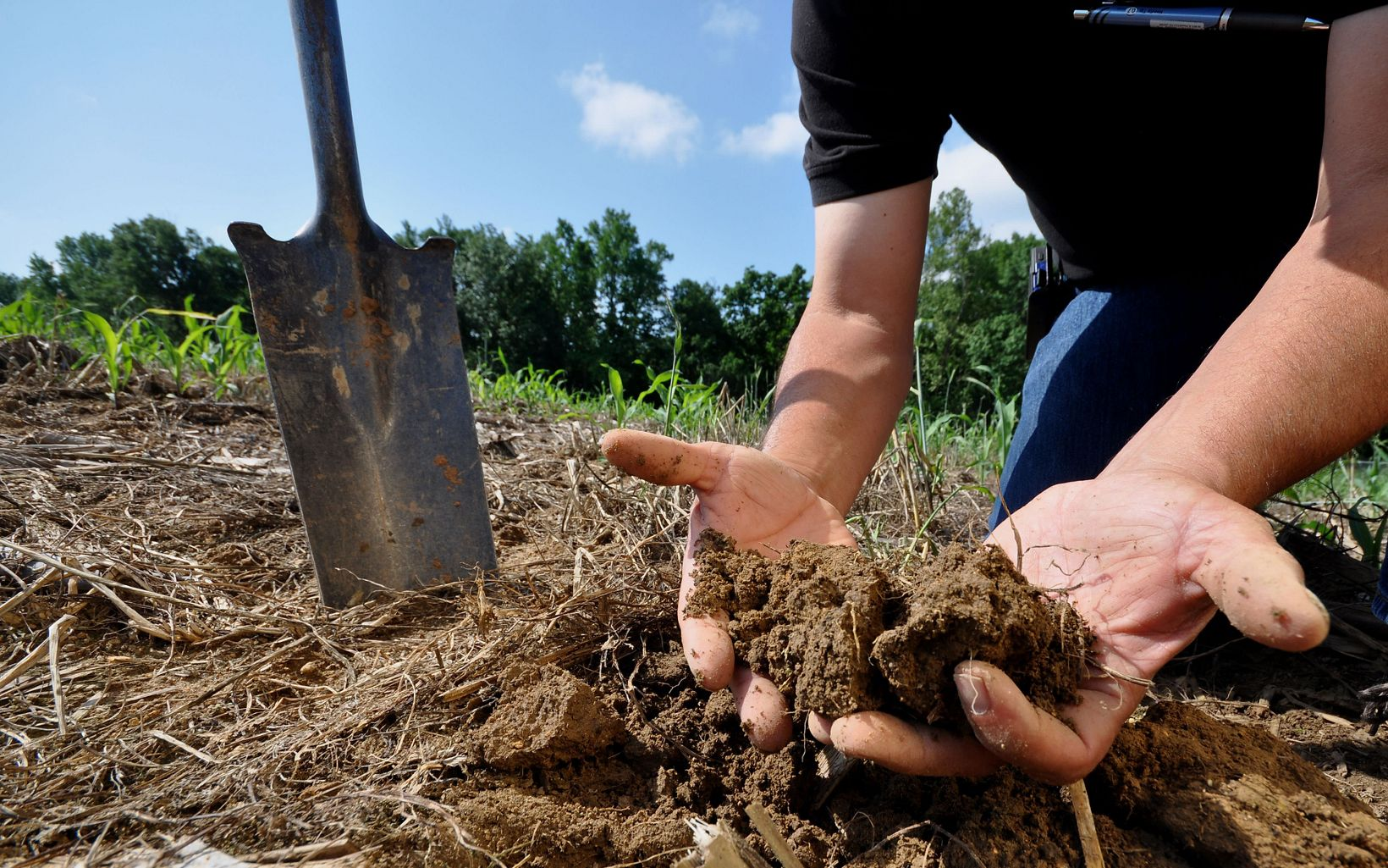 Soil is one of the most biologically diverse ecosystems on Earth. It also produces 95 percent of our food, filters our drinking water and reduces the impact of climate change.