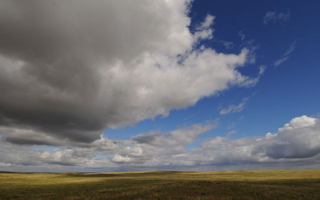 View of expansive grassland in Mongolia