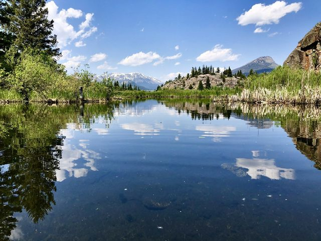 A view of a body of water surrounded by aquatic vegetation, trees, rocky hills, and distant mountains.