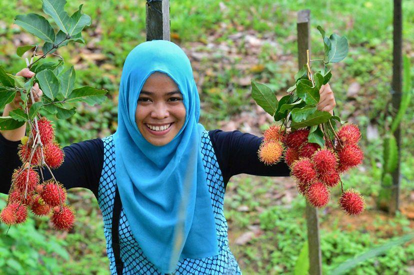 Woman holding rambutan, a redish orange fruit