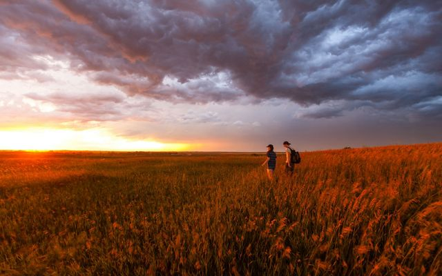 Hikers in the prairie after a thunderstorm near Strawberry Lake, North Dakota.