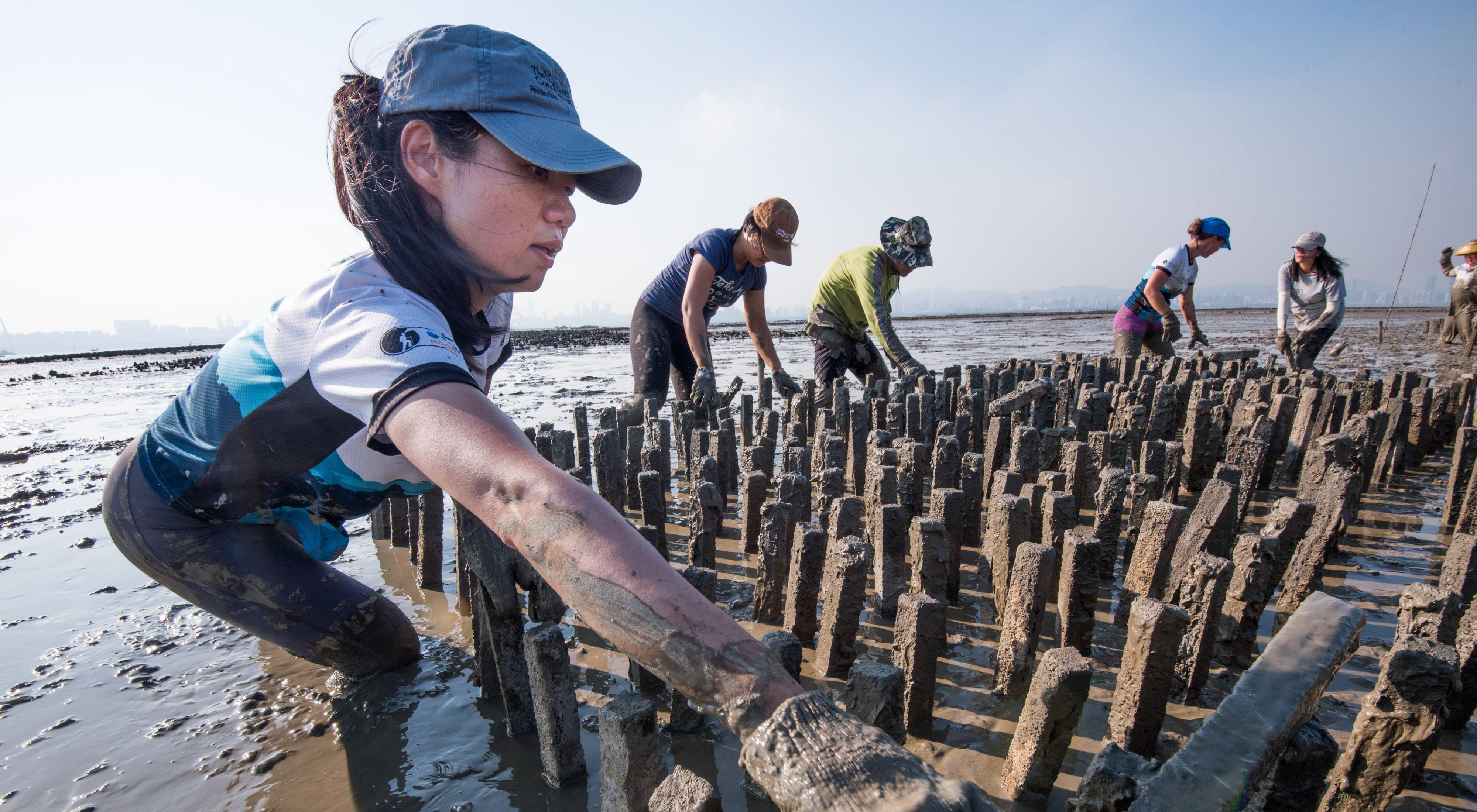TNC團隊及合作夥伴於香港建造人工蠔礁