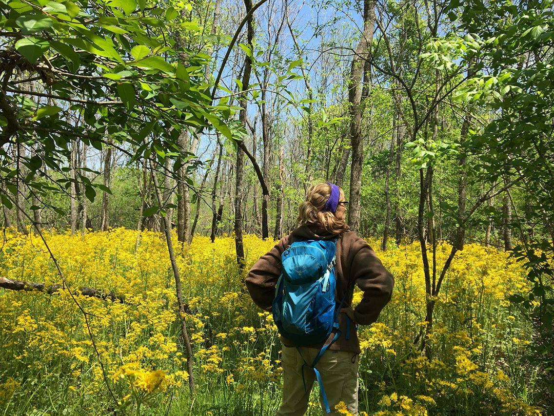 One woman standing in a blooming meadow.