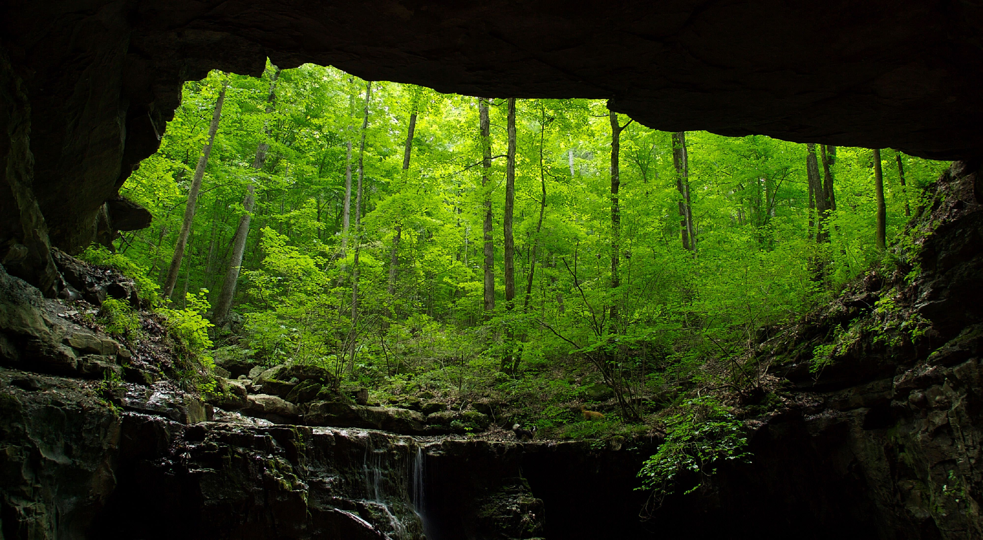 Entrance to Hubbard's Cave