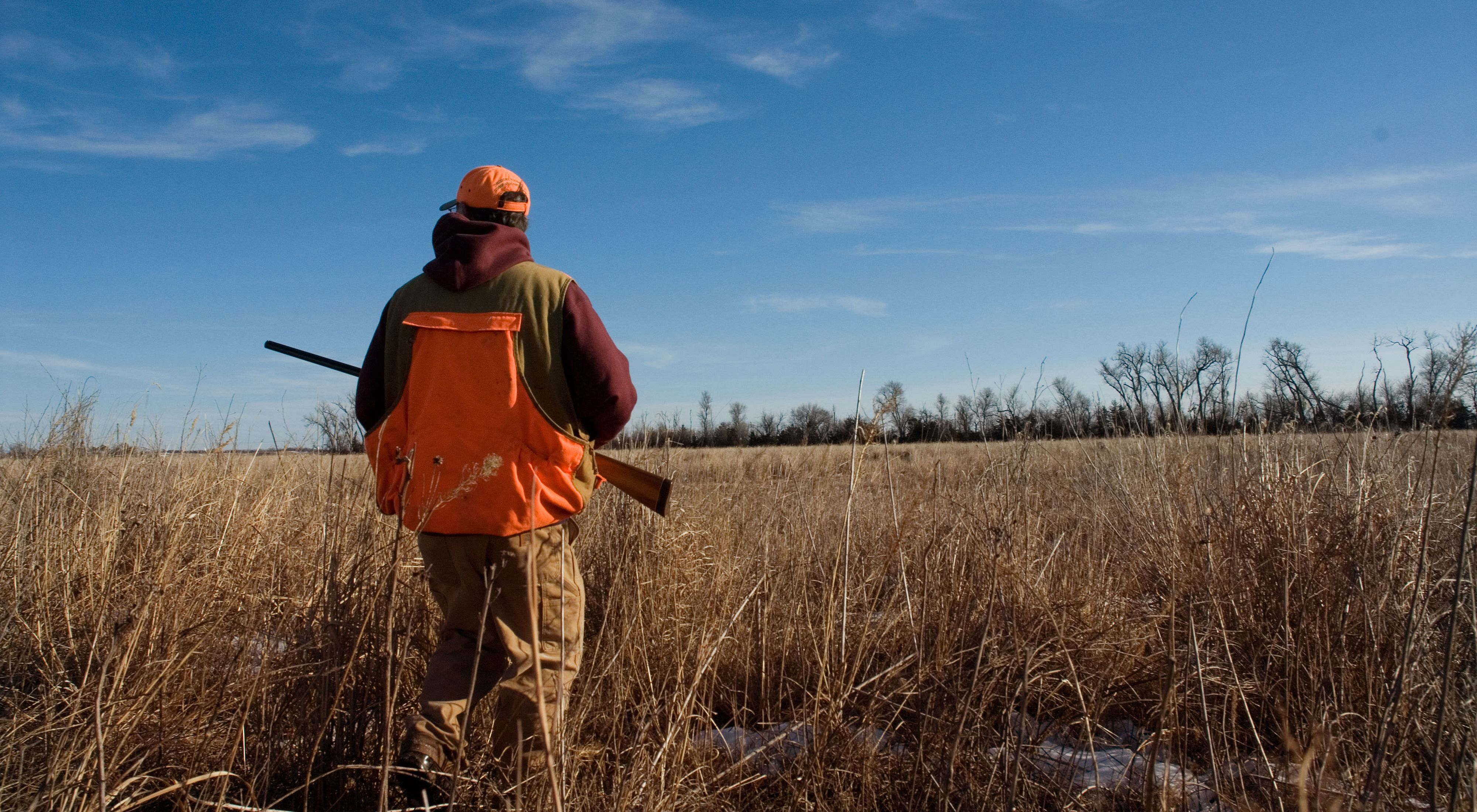 A man with a gun sets out to hunt on grasslands