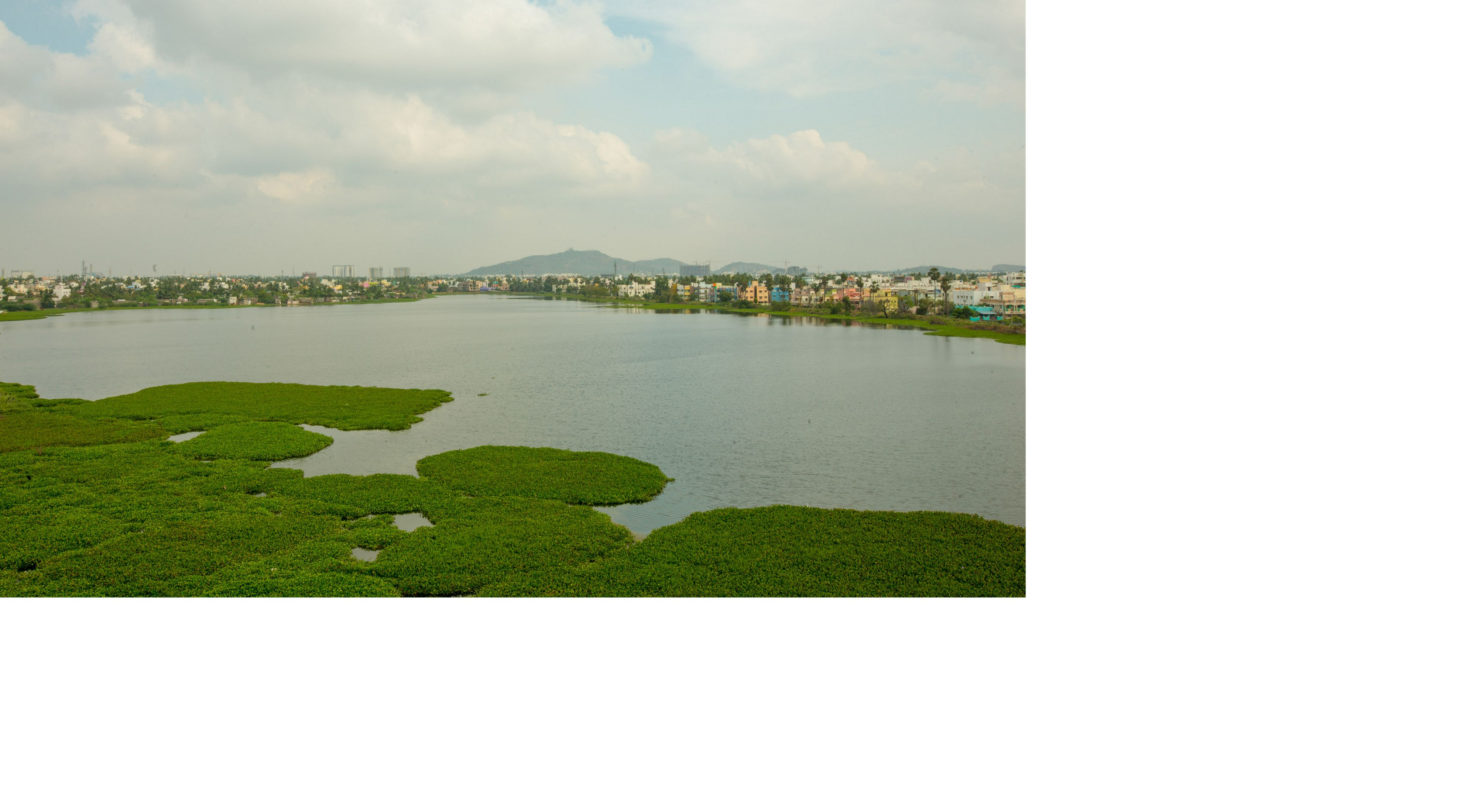 Lake Sembakkam in Chennai, India