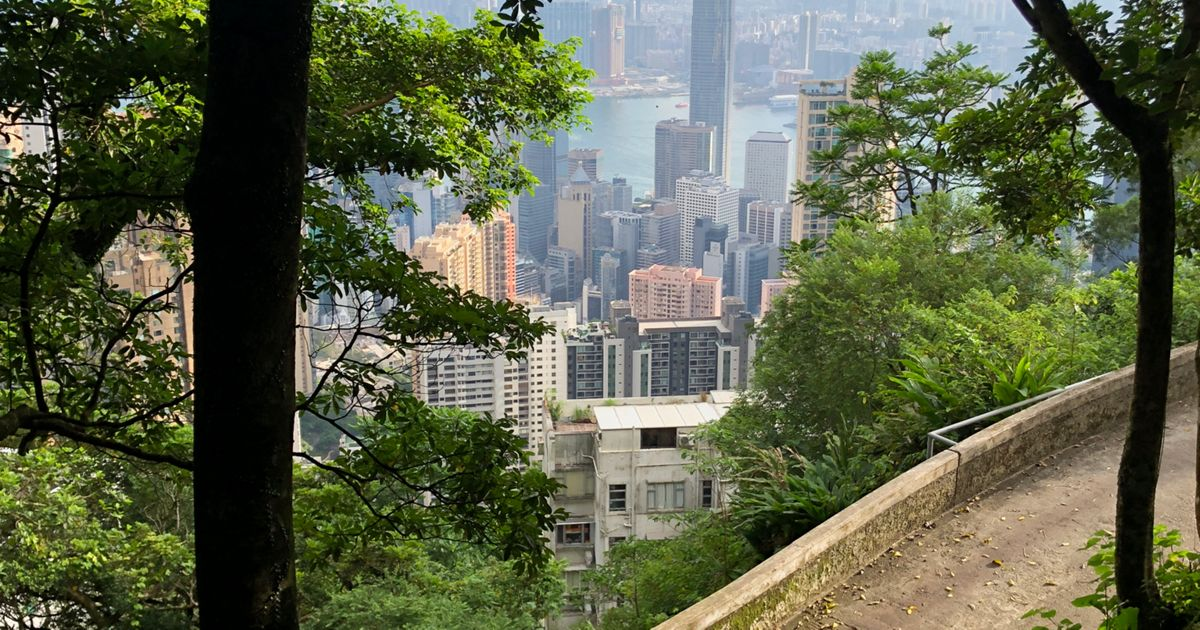 A man takes a walk through a green area at Victoria Peak overlooking Hong Kong.