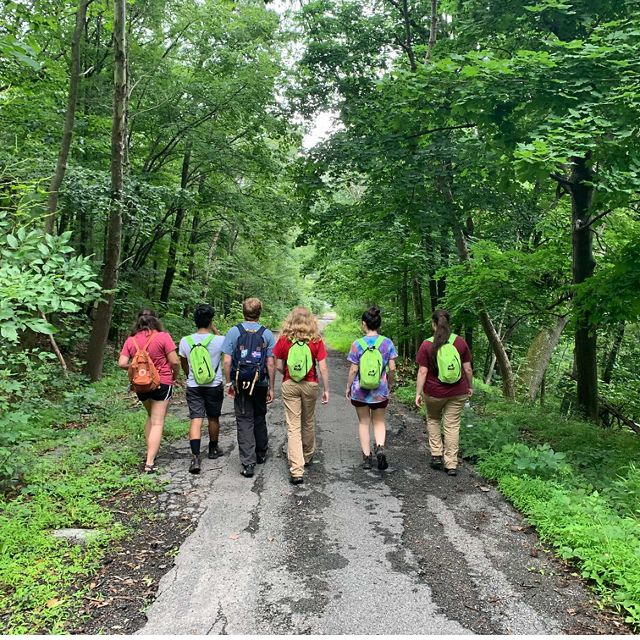 Western Maryland's 2019 LEAF cohort set a path at Wills Mountain.