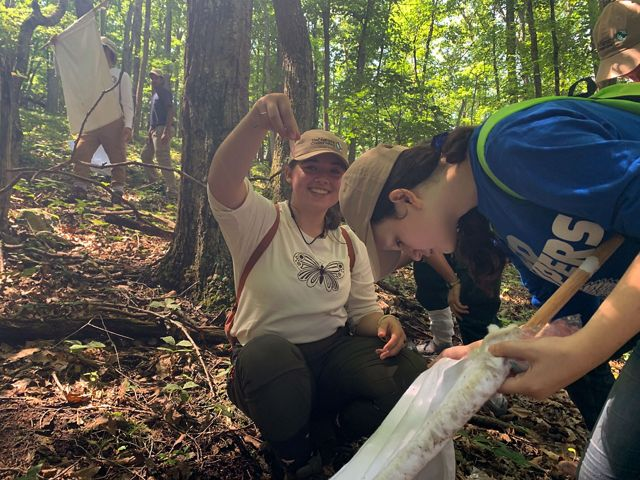 A group of three students conduct fieldwork in a forest. A smiling student holds up a small plastic sample bottle containing a tick.