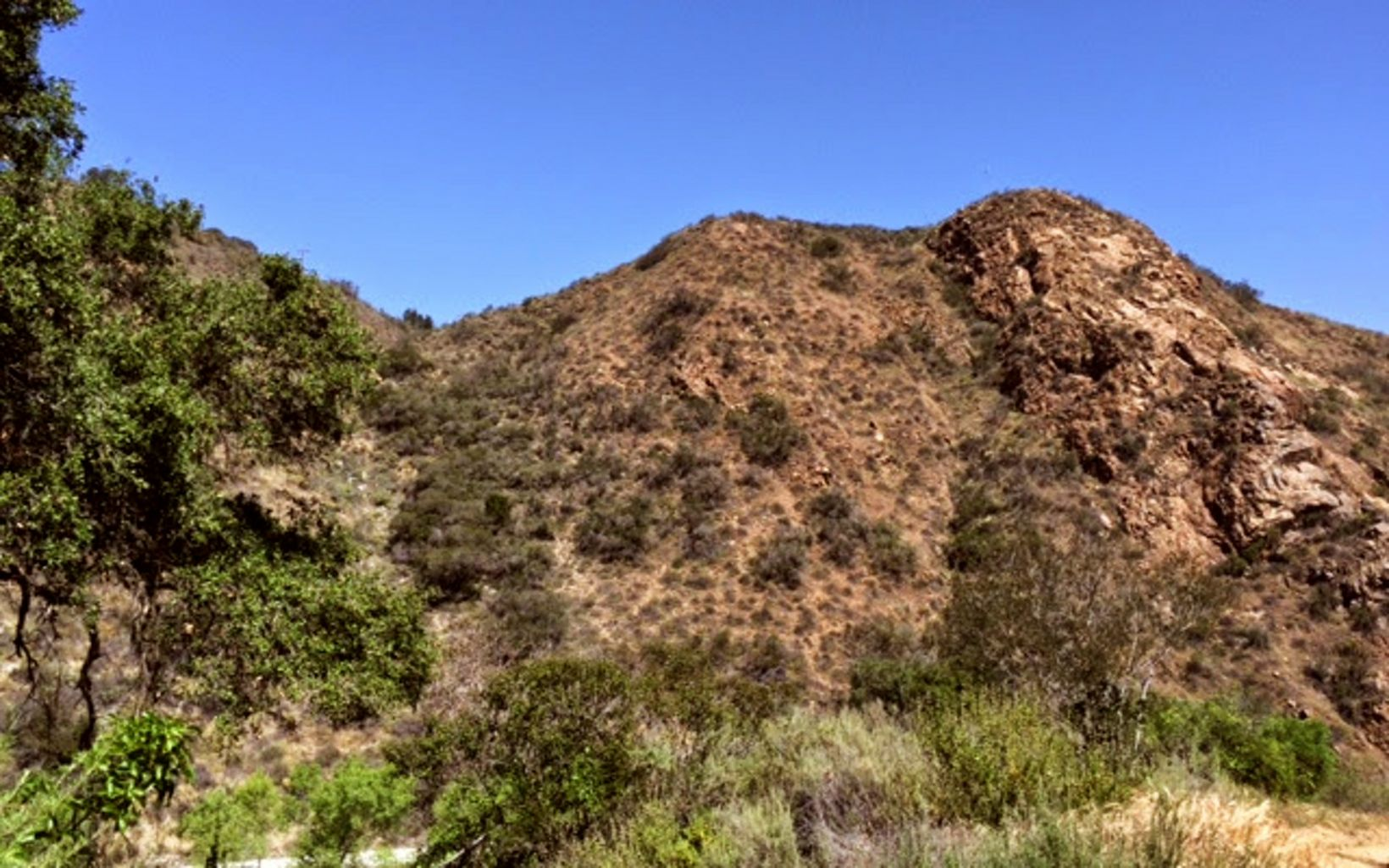 This 4,344-acre reserve in the Santa Ana Mountains provides habitat for mountain lions and other species whose survival depends on access to a large geographic range.