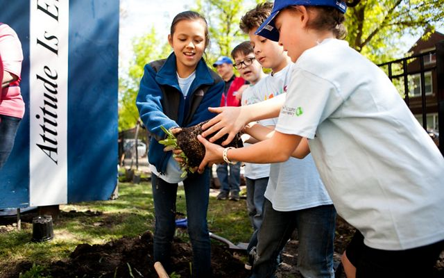 Goethe Elementary garden build