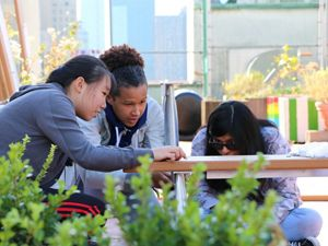 Building an outdoor classroom in NYC