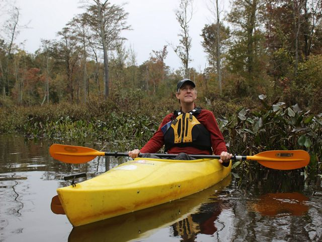 Candid photo of Senior Conservation Writer Daniel White. A man sits in a yellow kayak holding a paddle. He is looking up into the trees. The kayak is sitting in the open water of a cypress swamp.