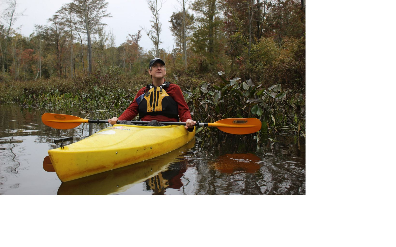 Danny White takes a moment to enjoy the beauty of Dragon Run during a fall paddle with Friends of Dragon Run.