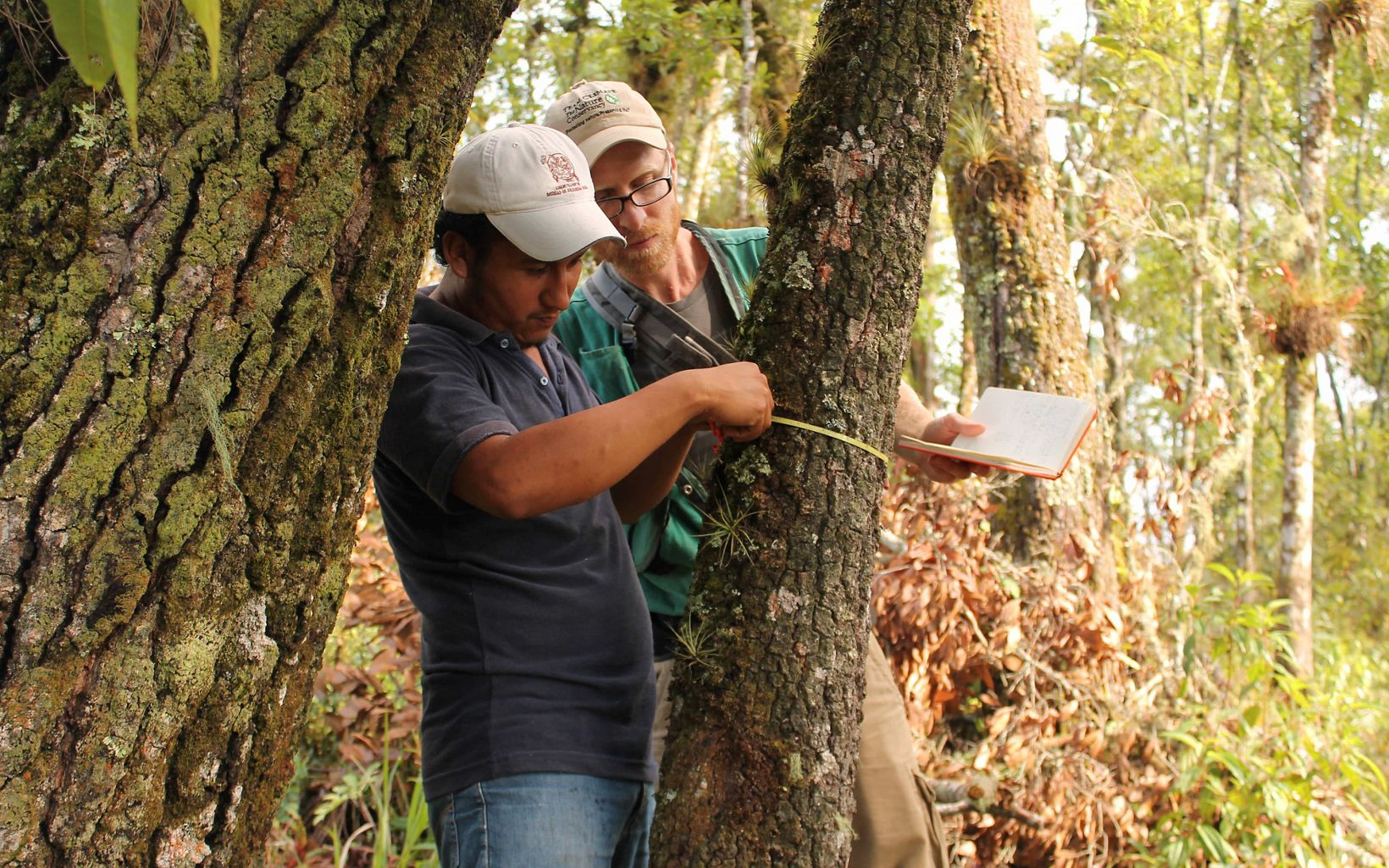 Peter Ellis works with a partner to implement sustainable logging practices in Mexico.