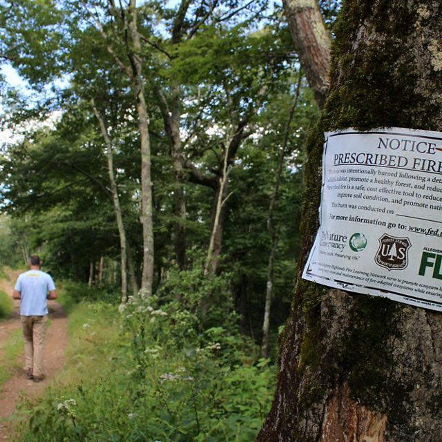 A man in a blue shirt walks down a forest trail. In the foreground a metal sign afixed to a tree announces that this is a prescribed fire area, detailing that the area was intentionally burned.