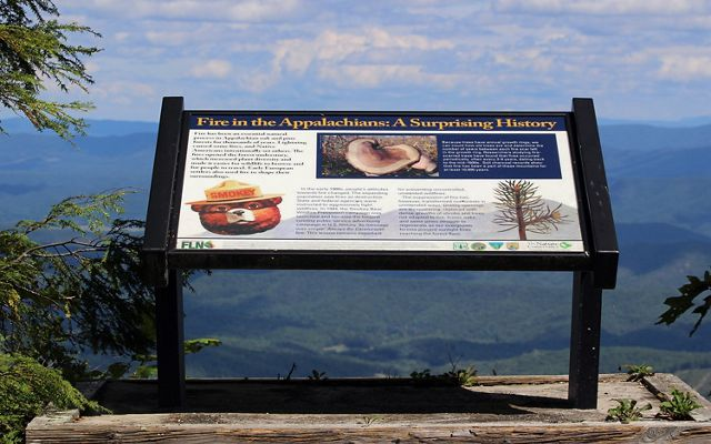 An interpretive sign on Warm Springs Mountain's Bear Loop Trail. The sign overlooks a mountain valley and describes the history of active fire suppression by forest services in the early 20th century.
