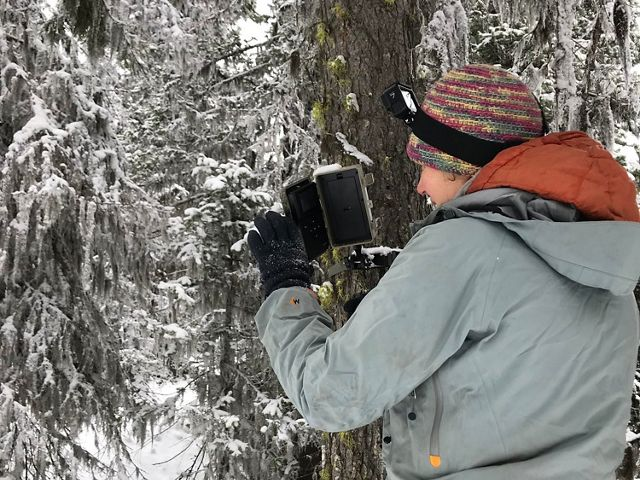 Do our forest thinning strategies align with snowpack retention to secure water in a warming climate?
