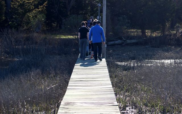 A group of people walk single file across a wooden boardwalk.
