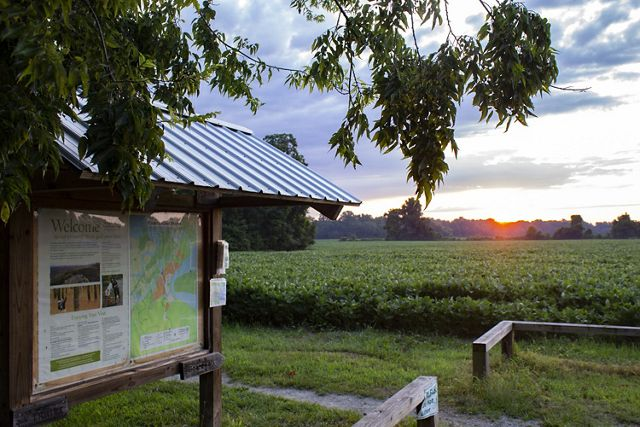 Sun rise over a large field of soybeans. The sun hangs low on the horizon. A large information kiosk is in the foreground.