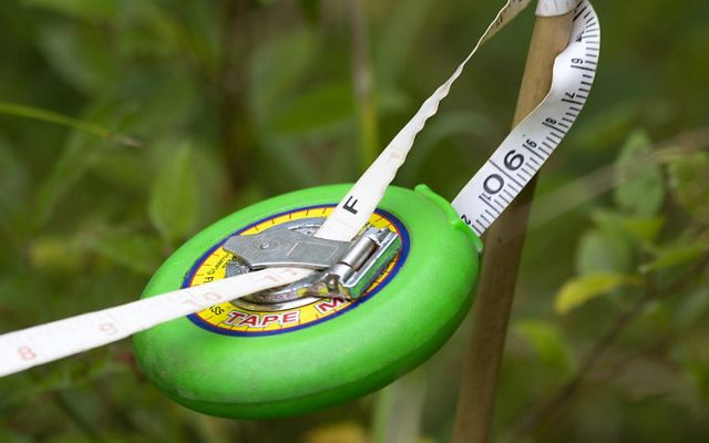 A round green tape measure hangs suspended from its tape, tied off to a narrow wooden dowel.