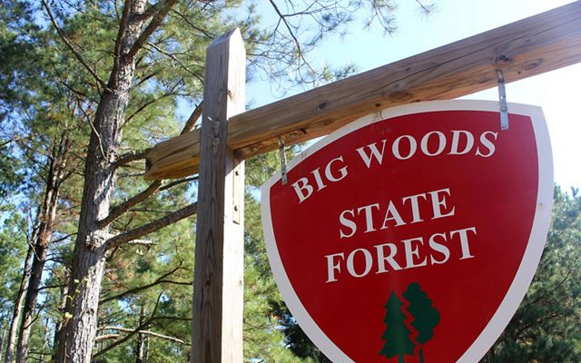 Sign at Big Woods State Forest
