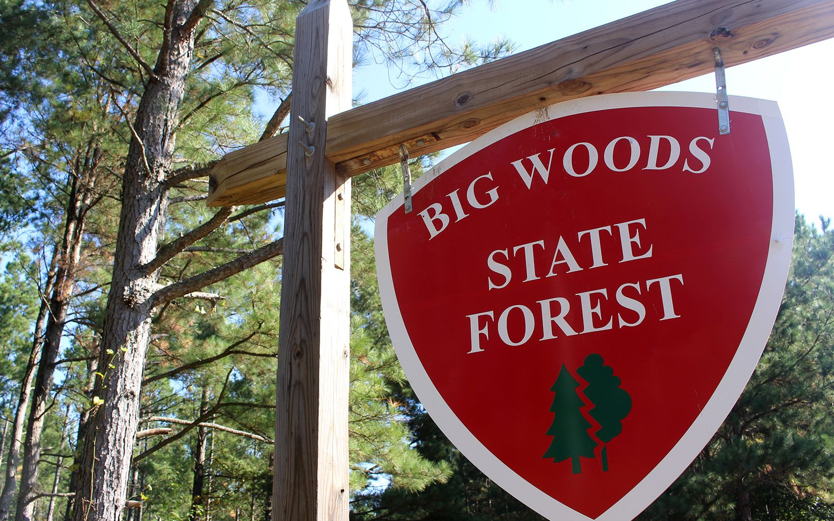 Big Woods State Forest, Big Woods Wildlife Management Area and Piney Grove Preserve together protect more than 7,500 acres of critical forest habitat.