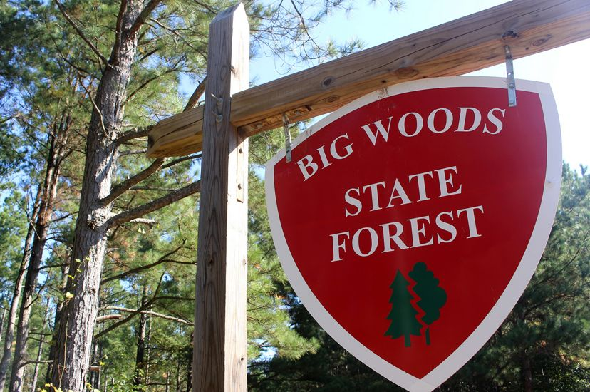 """A sign at Big Woods State Forest. The shield shaped sign is painted red and reads, """"Big Wood State Forest"""" in white letters. A illustration of green trees is painted at the bottom."""
